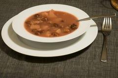 Soupe hongroise traditionnelle à cerise avec la pomme et la carotte dans une cuvette sur une table image stock