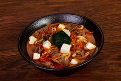 Soupe japonaise avec le tofu et le boeuf images libres de droits