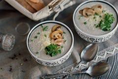Soupe pour le dîner Photo libre de droits