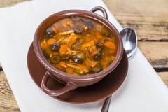 Soupe russe traditionnelle à viande avec les concombres salés Photos stock
