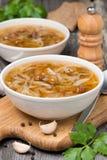 Soupe russe traditionnelle à chou avec les champignons sauvages Photographie stock libre de droits