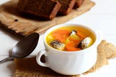 Soupe végétale chaleureuse à poissons Soupe lente délicieuse à poissons avec des pommes de terre et des carottes dans une cuvette image libre de droits