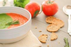 Soupe végétarienne crue dans la cuvette images stock