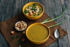 Soupe végétarienne sur la table Image stock