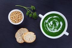 Soupe vert clair crémeuse à épinards dans la cuvette photographie stock