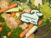 soupgrönsaker Royaltyfri Bild