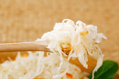 Sour cabbage - sauerkraut - on wooden spoon Royalty Free Stock Image