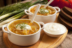 Sour cabbage soup Stock Photo