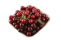 Sour cherries Stock Photos