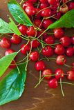 Sour cherries Stock Photo