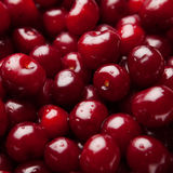 Sour cherries, close-up view Stock Photos