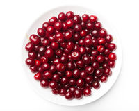 Sour cherries on a plate Royalty Free Stock Images