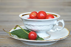Sour cherries in a porcelain cup Royalty Free Stock Photos