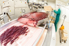 Sour cherries in processing machines Stock Photo