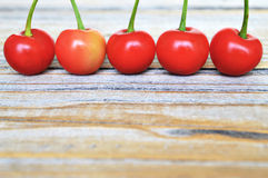Sour cherries in a row Royalty Free Stock Images