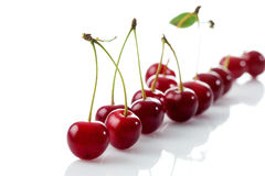 Sour cherries in a row Stock Photography