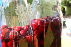 Sour cherries topped with schnapps and added sugar. In glass jars on the afternoon sun royalty free stock photo
