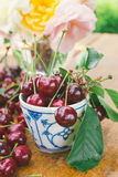 Sour cherries Royalty Free Stock Images