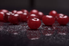 Sour cherries with water drops Stock Photography
