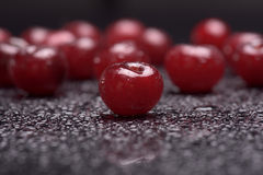Sour cherries with water drops Stock Photo