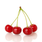 Sour cherries on white Royalty Free Stock Image