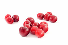 Sour Cherry. Isolated on white Royalty Free Stock Photography