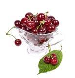 Sour cherry Royalty Free Stock Photos