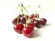 Sour cherry Stock Image