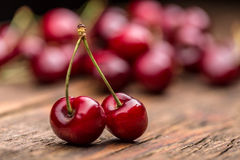 Sour cherry berries Stock Image