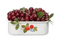 Sour cherry bowl Stock Image
