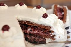 Sour cherry cake with whipped cream. Sour cherry cake with whipped cream - piece of cake close-up Stock Images