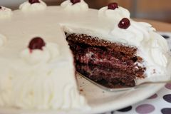 Sour cherry cake with whipped cream. Sour cherry cake with whipped cream - piece of cake close-up Royalty Free Stock Photo