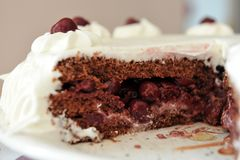 Sour cherry cake with whipped cream. Sour cherry cake with whipped cream - piece of cake close-up Stock Photos