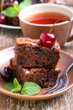 Sour cherry chocolate brownies Royalty Free Stock Photos