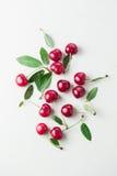 Sour Cherry. Fresh organic sour cherry, ripe, deep red cherry stock photography