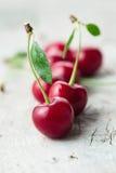 Sour Cherry Stock Photos