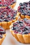 Sour cherry pie Stock Images