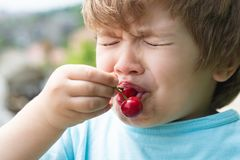 Sour cherry, sour taste. Baby boy first tries cherry. Emotional child. Healthy food. Apetite. Emotions from the sour on royalty free stock photos