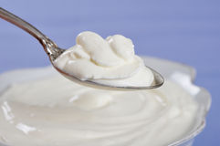 Sour cream Stock Photo