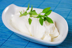 Sour cream with basil Royalty Free Stock Photos