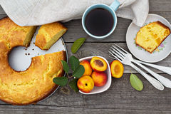 Sour cream cake with nectarines Royalty Free Stock Photo