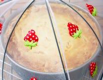 Sour cream Stock Photos