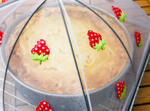 Sour cream cake Royalty Free Stock Photo