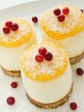 Sour cream cheesecakes Stock Image