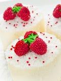 Sour cream cheesecakes Royalty Free Stock Photo