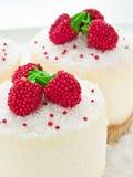 Sour cream cheesecakes Stock Photos