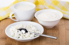 Sour cream, milk in cup and cottage cheese in bowl Royalty Free Stock Photo