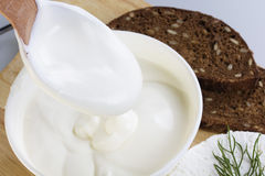 Sour cream and  quark Stock Photography