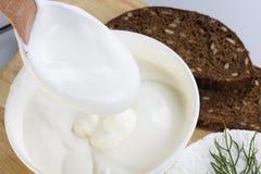 Sour cream and  quark. Fresh sour cream and  quark Stock Photography