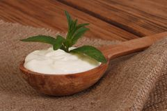 Sour cream in a wooden spoon Stock Photography